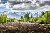 Ohau Valley View - New Zealand