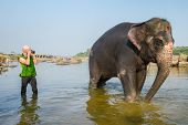 HAMPI, INDIA - FEBRUARY 1, 2013: Unidentified tourist taking pictures of Lakshmi, the temple elephant, as she stands in the river on February 1, 2013 in Hampi, Karnataka, India.