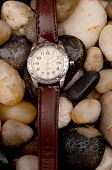 Mens Diving Wristwatch On Wet Pebbles