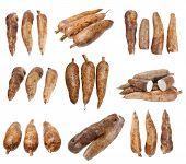 picture of cassava  - three whole manioc  - JPG