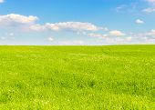 foto of grass area  - Field Grass Area  - JPG
