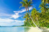 Exotic Paradise Green Getaway
