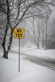 Stormy winter road and trees covered in snow with Yellow No Exit sign