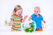 Kids Watching Fish Bowl
