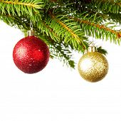 Decorative balls on natural green fir branch isolated on white background