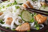 Asian Rice Noodles With Chicken And Cucumbers Macro