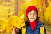 Boy's close up view with yellow maple leaves