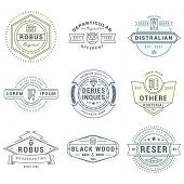 Set Of Hipster Vintage Labels, Logotypes, Badges For Your Business. Thin Line Design Template poster