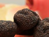 picture of truffle  - Three mushrooms black truffle on a red - JPG