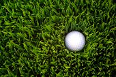stock photo of dimples  - Golf ball hidden in the rough grass - JPG