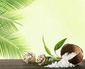 image of shells  - Sea salt in coconut shell on light background - JPG