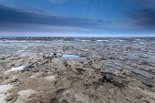 stock photo of tide  - low tide on North sea coast Netherlands - JPG