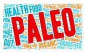 foto of fat-guts  - Paleo word cloud on a white background - JPG