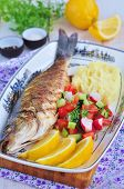 picture of mashed potatoes  - Fried fish served with mashed potato - JPG