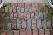 Old Brick Steps