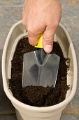 Mans Hand With A Trowel Digs In A Planter To Plant Seeds