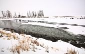picture of lamar  - Yellowstone Park Wyoming in Winter Lamar Valley - JPG