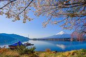 Mount Fuji With Snow Capped, Blue Sky And Beautiful Cherry Blossom Or Pink Sakura Flower Tree In Spr poster