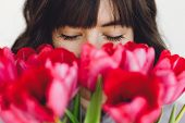 Beautiful Brunette Girl Portrait With Red Tulips Closeup On White Background Indoors, Space For Text poster