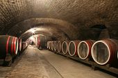 picture of wine cellar  - An old wine cellar with barrels - JPG