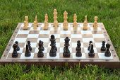 Chess Board With Chess Pieces On Green Grass In Daylight. Selective Focus On Black Pieces. Outdoors  poster