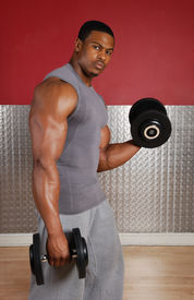 picture of lifting weight  - This is an image of a man lifting weights - JPG