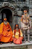Sadhu Men, Blessing In Pashupatinath Temple