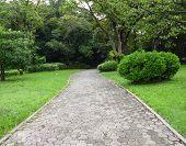 Garden path walk in public park to forest.