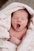 Sweet Yawning
