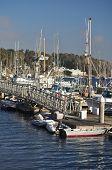 The Marina at Morro Bay, California