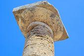 Paestum Details 1
