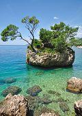 the famous Rock of Brela,Croatia