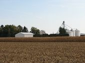 Farm With Grain Bins