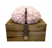 Think Outside The Box Brain
