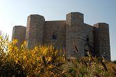 Italy, Apulia. Castel Del Monte