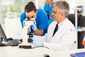 pic of chemistry technician  - senior medical researcher helping junior lab technician in lab - JPG