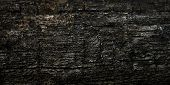 Damaged Wood Texture