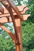 Wooden Pergola Close Up