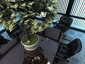 Money tree in the office.