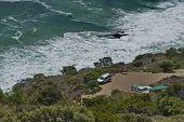 Chapman's Peak Drive. Small parking lot toward Hout bay coastline.
