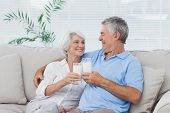 Mature couple clinking glasses of milk
