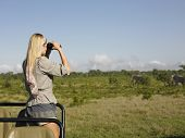 Rear view of a young blond woman on safari standing in jeep looking through binoculars