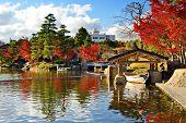 Fall foliage at  in Nagoya, Japan.