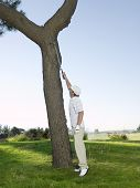 Side view of young male golfer retrieving ball from tree
