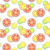 Citrus fruit background. Vector illustration for your fresh juicy design