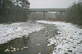 Bridge & Ducks in Snow
