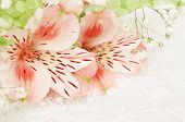 Pink Flowers For Wedding