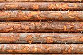 Train Logs