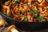stock photo of chanterelle mushroom  - chanterelle mushrooms in a frying pan on the table close - JPG