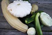 Patty pan squash and zucchini